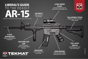 Liberal's Guide to the Deadly AR-15 Poster