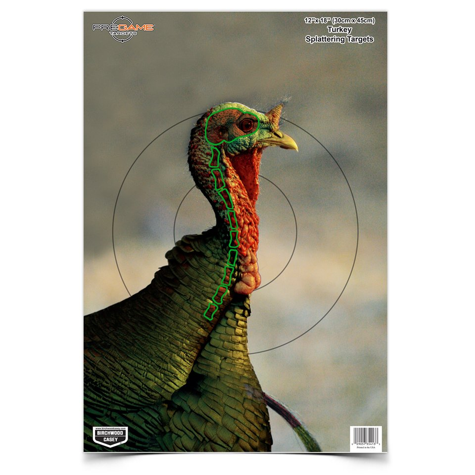 Clean image throughout free printable turkey shoot targets
